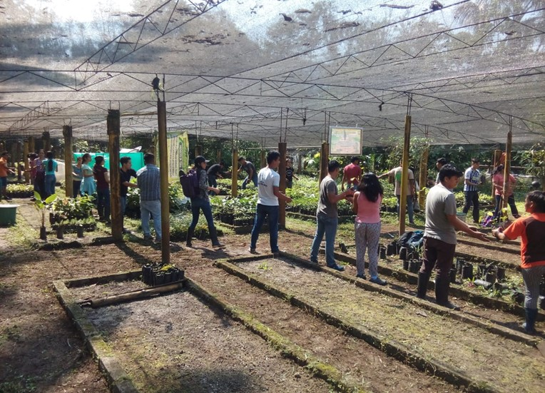 Limpieza y acondicionamiento en el Vivero Forestal de la Universidad Nacional Agraria de la Selva-UNAS que servirá para generar 15,000 plantones para ser distribuidos a comunidades que apuestan por la agroforestería.